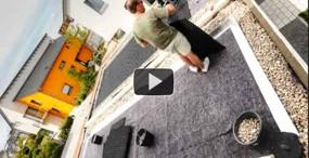 Dachbegrünung Garage
