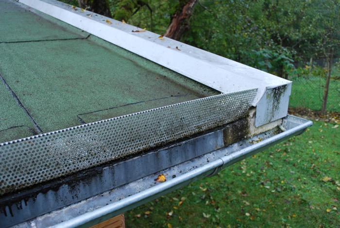 Familie M Aus Sigmaringendorf Erfahrungsberichte Dachbegrünung