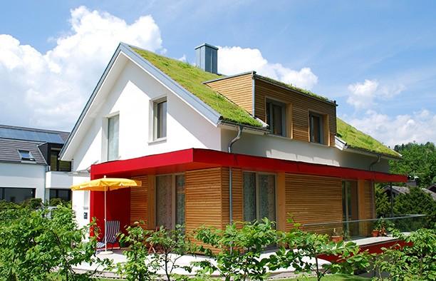 Dachbegrünung & Gründach Material Online kaufen | www ...
